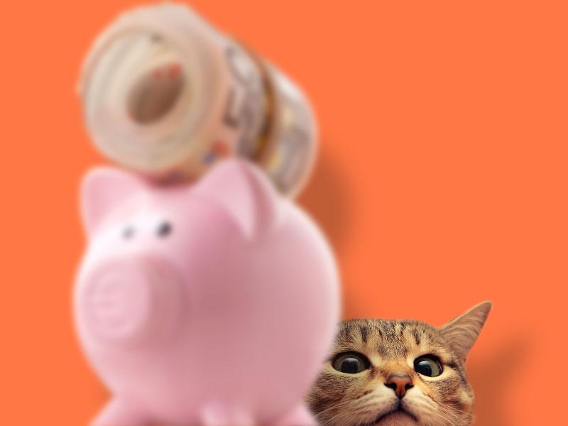 Les avantages pour vous, des services pratiques qui vous font gagner du temps et économiser de l'argent avec CROQ&CO